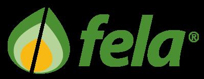 Fela Ticino SA